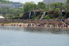 FEFU seafront