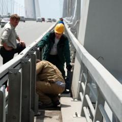 Life on the bridge
